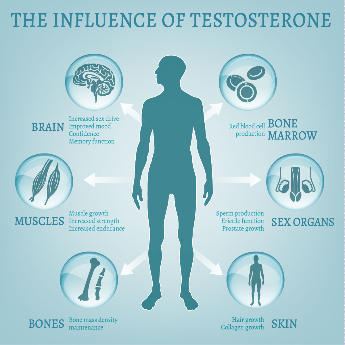 You are currently viewing Lider du af testosteronmangel?